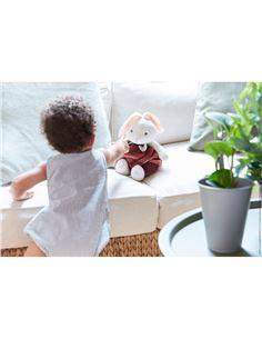Smart Games - Ardillas