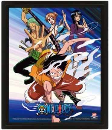 Poster 3D One Piece Straw Pirates