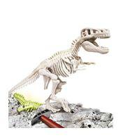 Encuentra el fósil