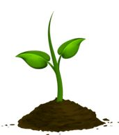 Planta, cultiva, aprende